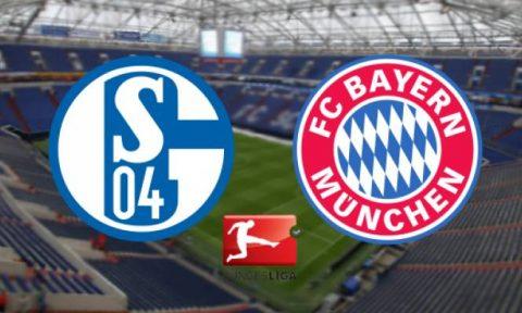 """Nhận định Schalke 04 vs Bayern Munich, 1h30 ngày 20/09: """"Hoàng đế xanh"""" sợ """"Hùm xám"""""""