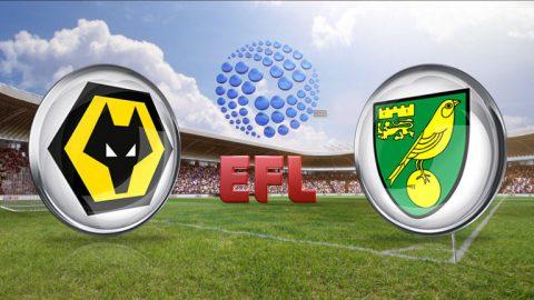 Nhận định Wolves vs Norwich, 02h45 ngày 22/02: Đối thủ khó nhằn